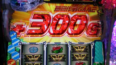 fafuna-300G
